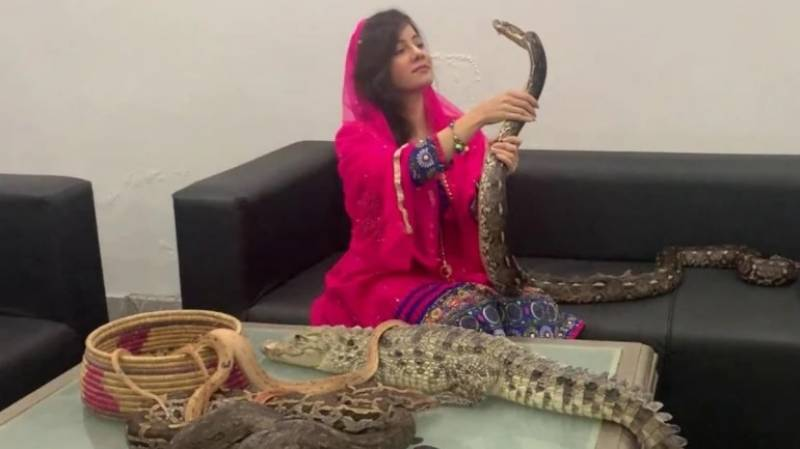 Singer Rabi Pirzada acquitted in wildlife case