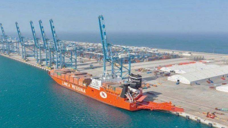 Zakaria appointed CPEC Authority CEO