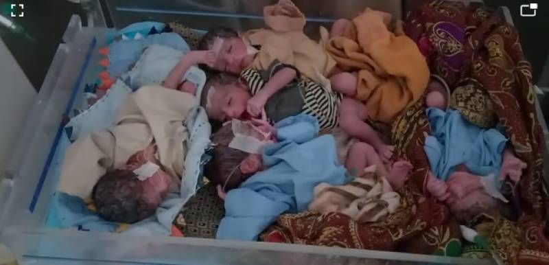 Taunsa woman gives birth to quintuplets