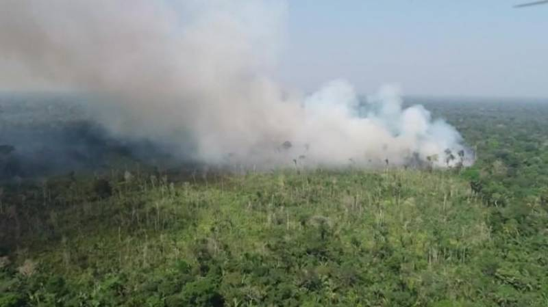 Amazon, African forests turning from CO2 sink to source