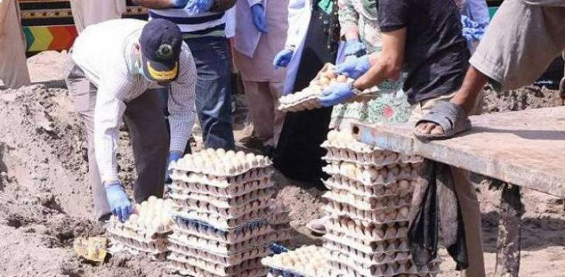 378,000 rotten eggs disposed of in Lahore