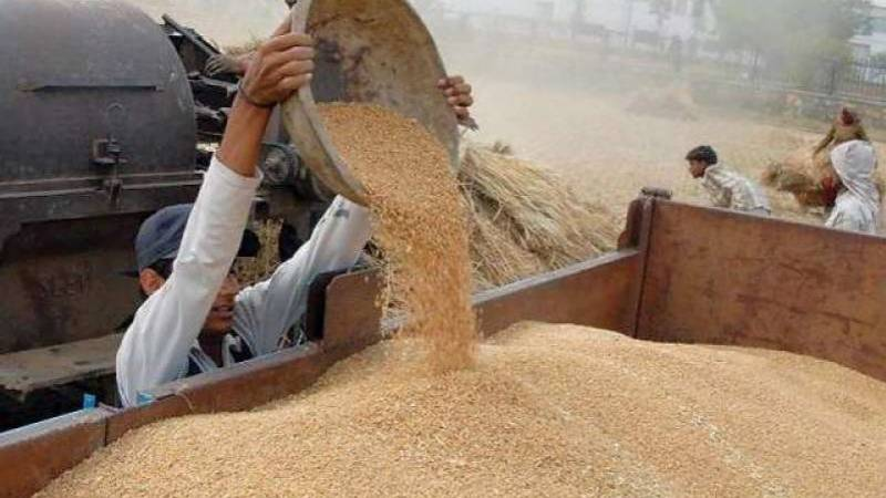 PM wants wheat crisis overcome once for all