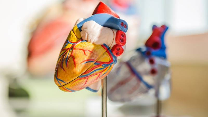 Study shows heart scans of more than half of COVID-19 patients abnormal