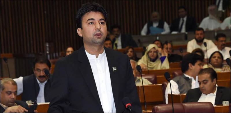 Opposition won't be given NRO: Murad Saeed