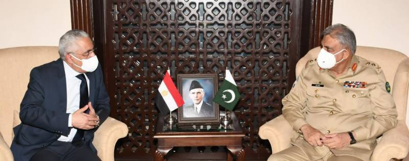 Egyptian Ambassador calls on COAS