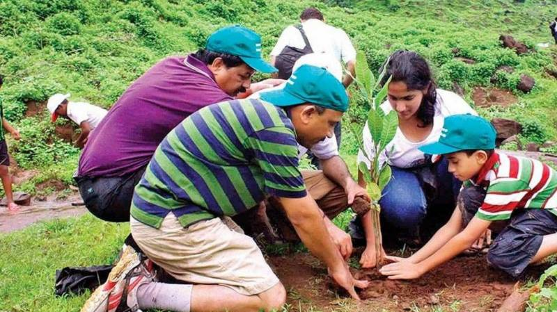 PIA to plant 50,000 trees nationwide
