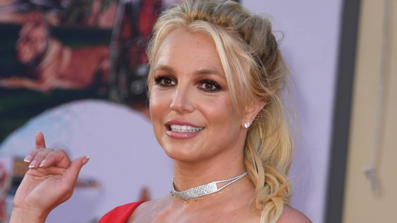 Britney 'strongly opposed' to father as sole guardian