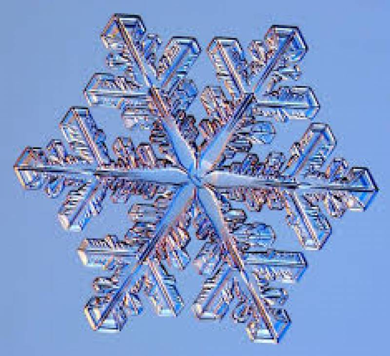 Cloud data specialty firm Snowflake files to go public