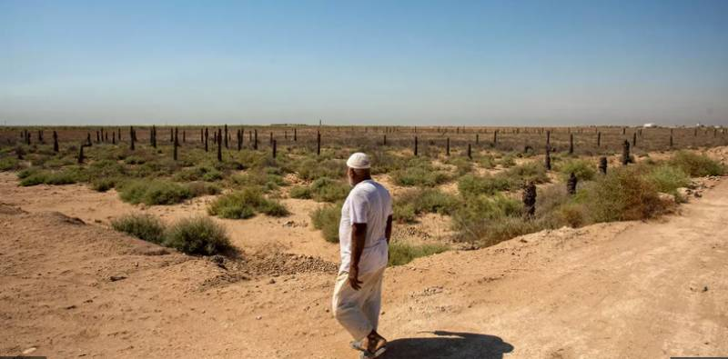 As neighbours build dams, Iraqis watch twin rivers dry up