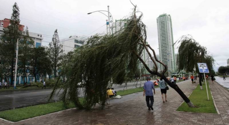 'Severe' punishment for N.Korea officials after typhoon casualties