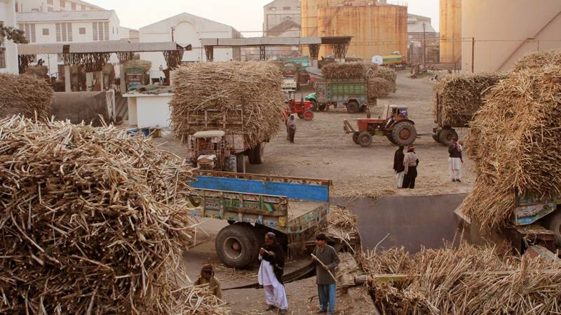 FBR initiates action against two sugar mills