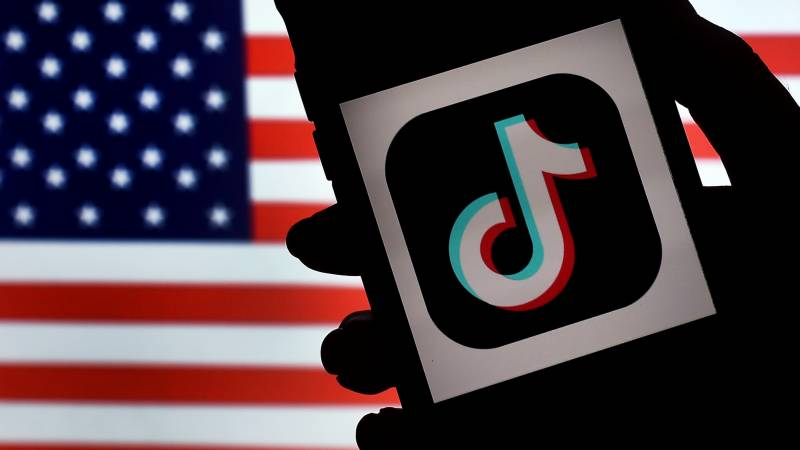 TikTok urges social media alliance against suicide content