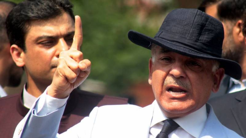 Shehbaz family's concealed assets revealed