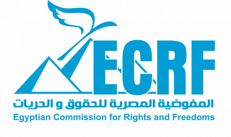 Egyptian human rights group wins Norway rights prize