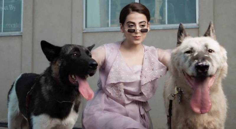 Actress Yashma Gill demands justice for her dogs