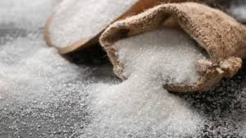 Over 100 tons of imported sugar arrived in Karachi: Hammad Azhar