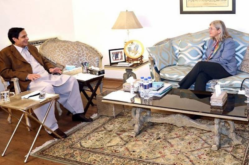 Canadian envoy discusses political situation with Parvez Elahi