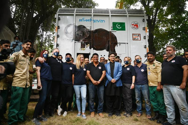 Kaavan elephant heads to Cambodia after Cher campaign