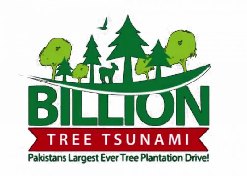 Climate change ministry seeks data to satisfy SC on 10 Billion Trees Tsunami