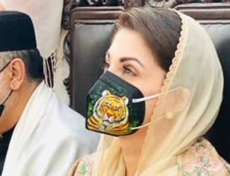 PML-N worker provides 25,000 masks for Lahore rally