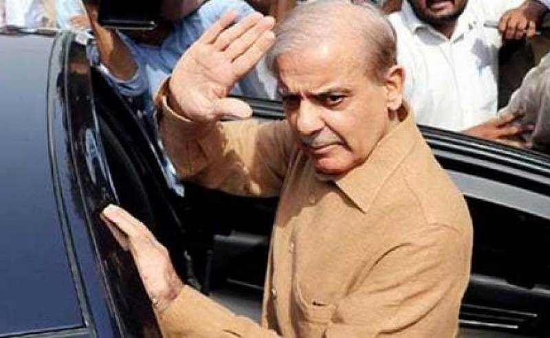 Court orders govt to include Shehbaz's personal doctors in medical board