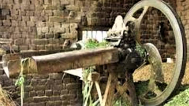 Woman loses both hands to fodder machine