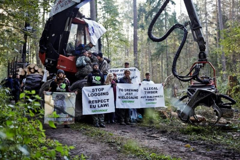 Brussels warns Warsaw over ancient forest