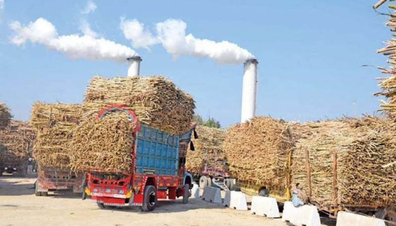 Sugar mills given two days to clear growers' dues