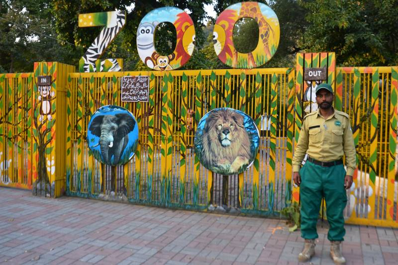 Islamabad Zoo begins mammoth makeover after Kaavan's departure