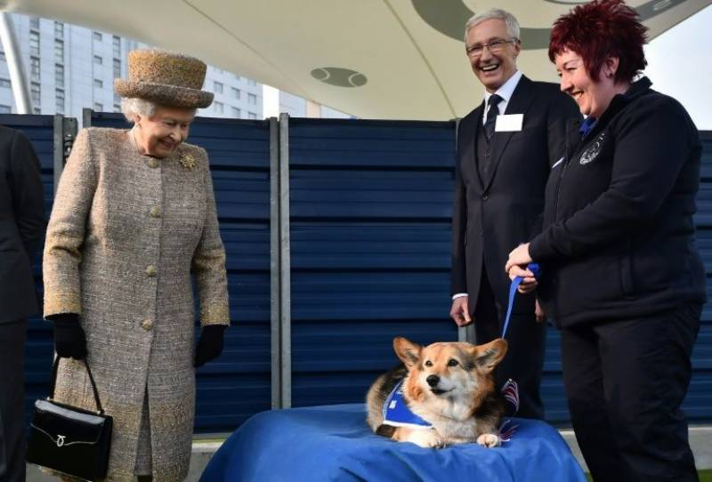 During tough times, dogs save the Queen: report