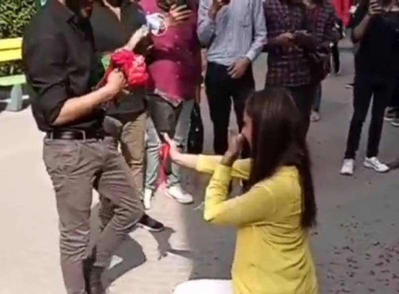 University girl gets down on her knee to propose to her love