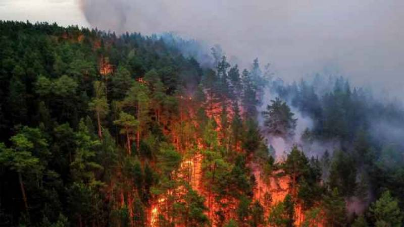 Russia forecasters warn over Siberia forest fires