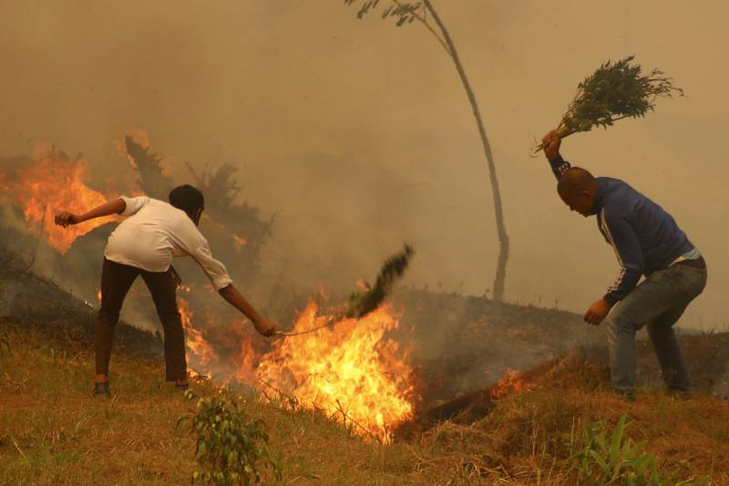 Nepal hit by worst wildfires in almost a decade