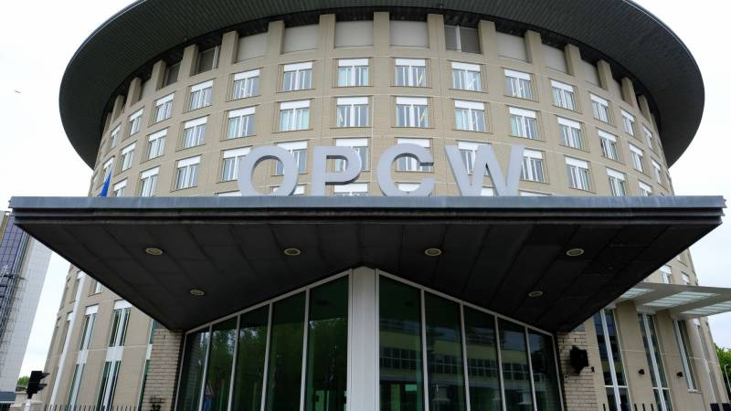 Chemical weapons watchdog votes to suspend Syria's rights