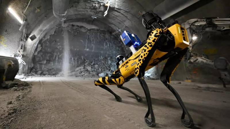Researchers' new best friend? Robot dog gets to work