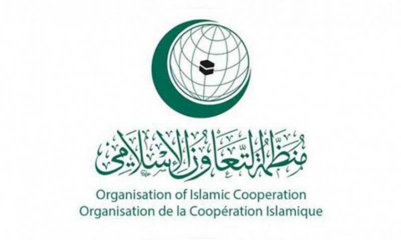 OIC Group at UN adopts Pakistan-proposed resolution to condemn Israel