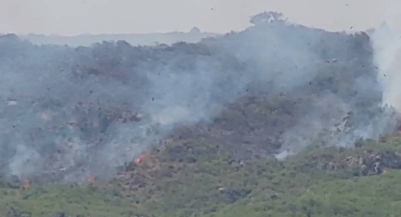 Fire at Margallah Hills brought under control