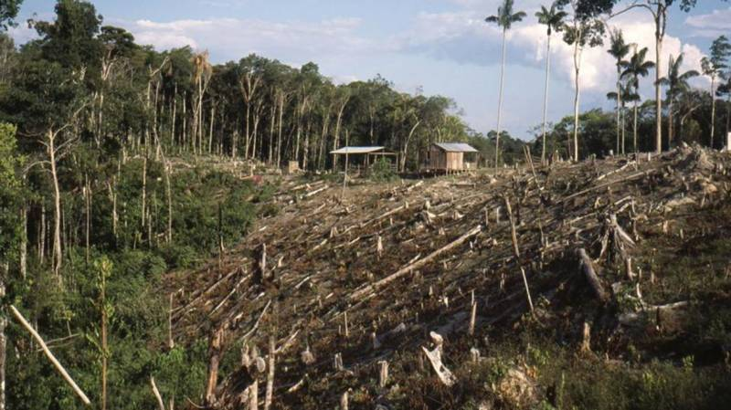 Tackle climate change and biodiversity loss together: UN panel