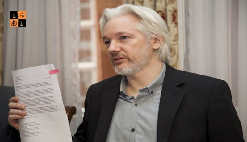 Assange fiancee calls his detention in UK 'grotesque'