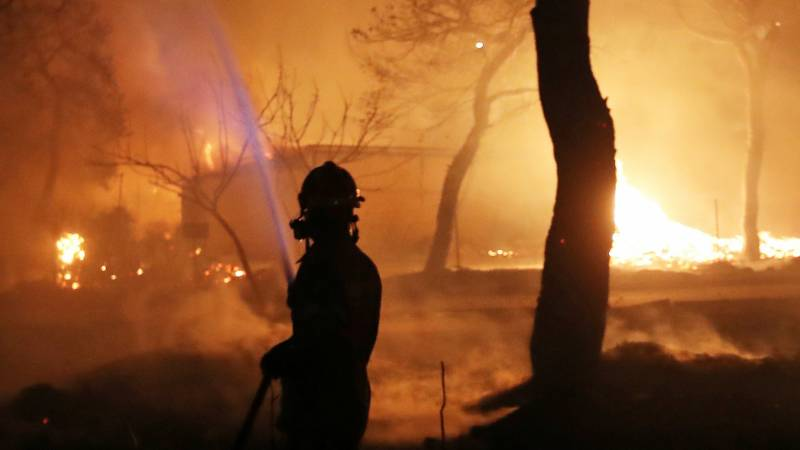 Four dead in Cyprus' worst forest fire in decades