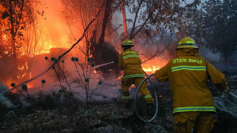 Cyprus says huge forest blaze fully 'under control'