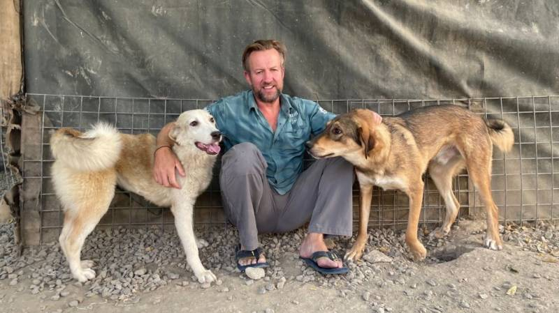 Briton can evacuate 200 dogs and cats from Kabul, UK rules