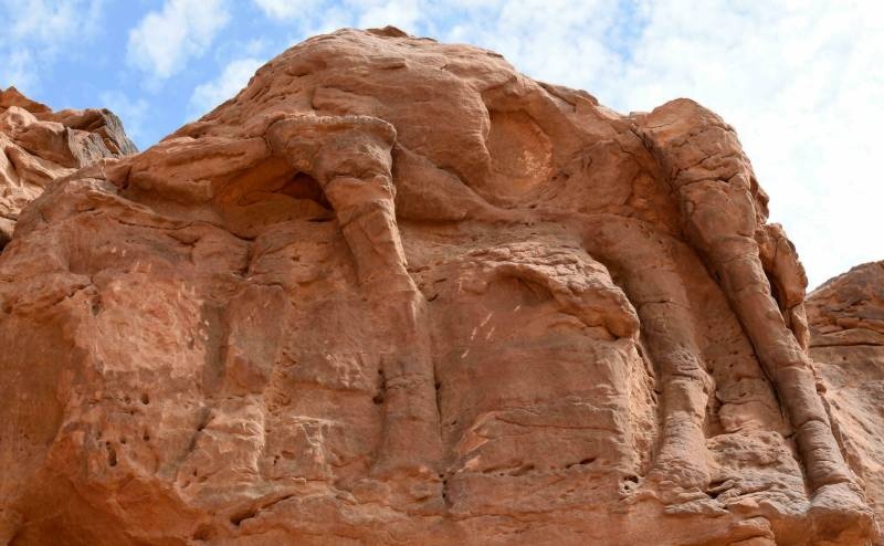 Desert camel carvings dated to around 7,000 years ago