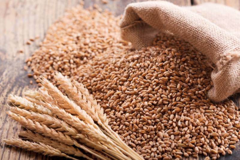 Govt orders probe into delay in import of wheat